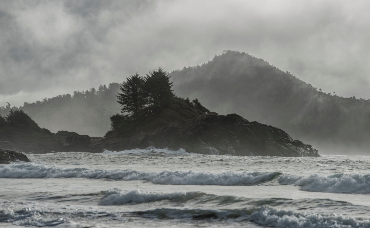 Cox bay morning fog