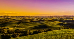 Palouse sunrise2